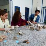 Aula sobre prática de Laboratório (7)