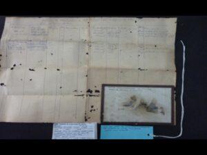 Foto de Salles Cunha escavando a duna de Itaipu – Este material original se refere à escavação em que foram encontrados os ossos de baleia com marcas de queima- Acervo IAB 1970