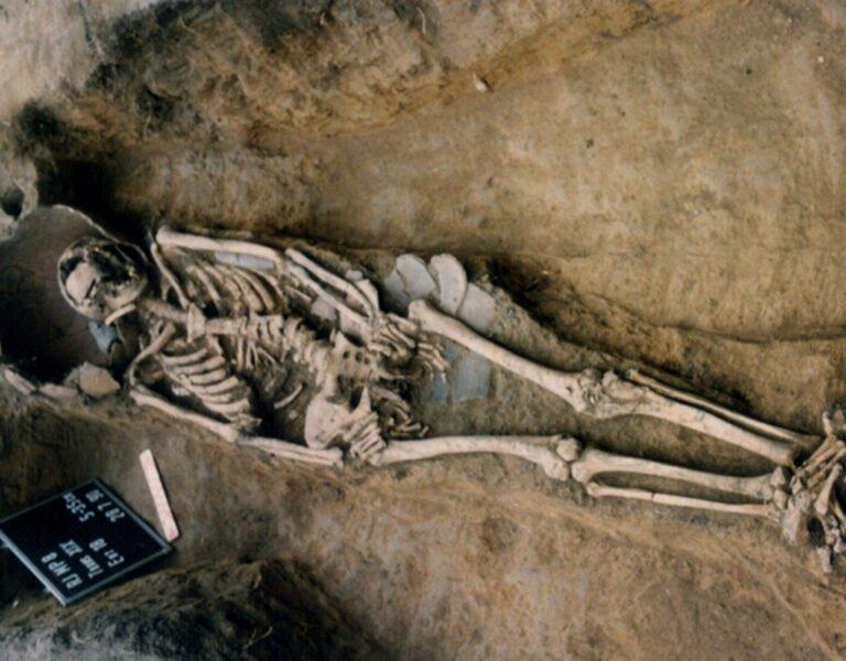 Fotografia da escavação. Foto: IAB