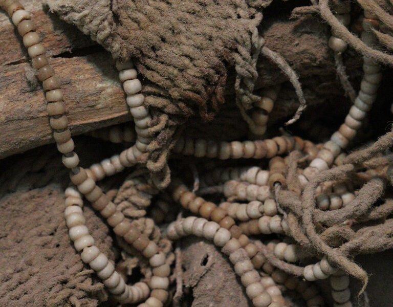 Imagem da escavação da Múmia Acauã. Foto: IAB